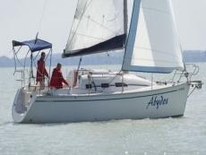 neugebautes Dolphin 28 Segelboot